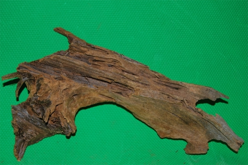 Мангровые коряги